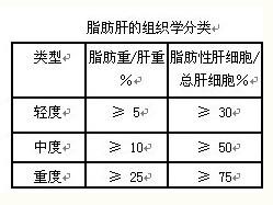 脂肪肝的组织学分类